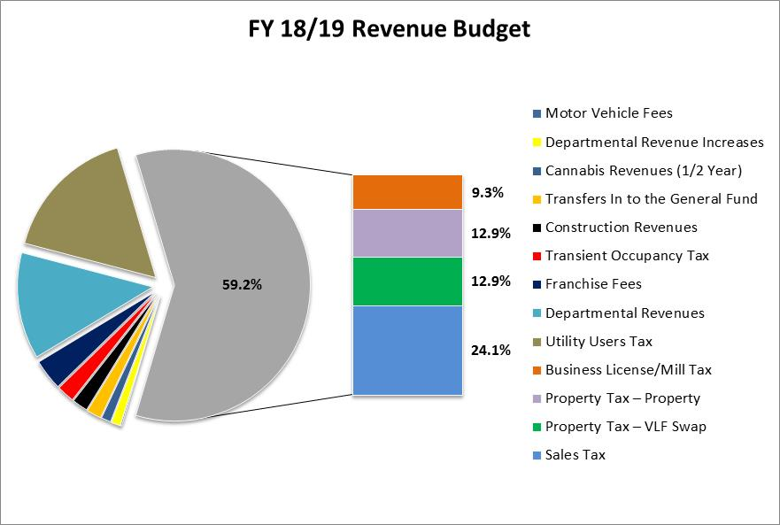 Chart of revenue budget items for Fiscal Year 2018 2019